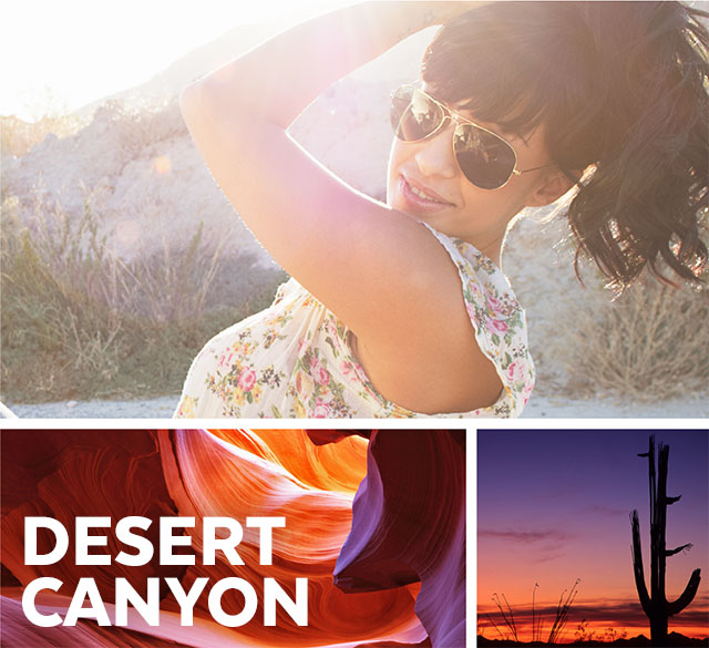 Speck Products Spring 2016 Collection - Desert Canyon